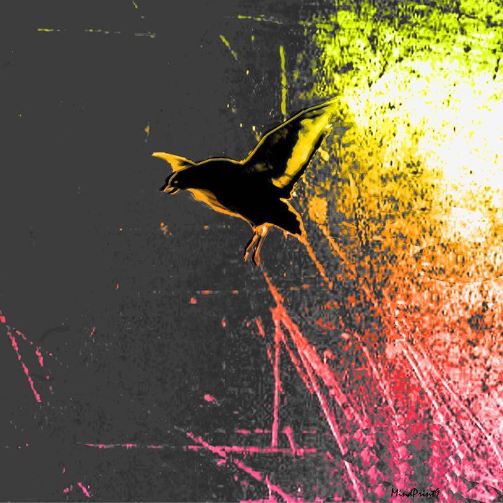 Spring Bird - Monolova