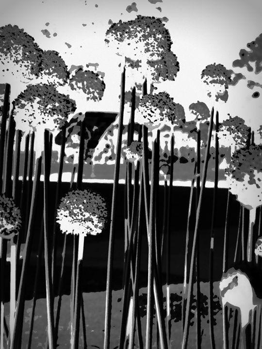 Garden 2 - Anetart Aneta Srodon