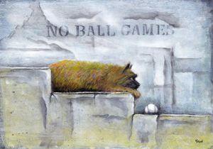 Henry,Cairn terrier. - Boyle
