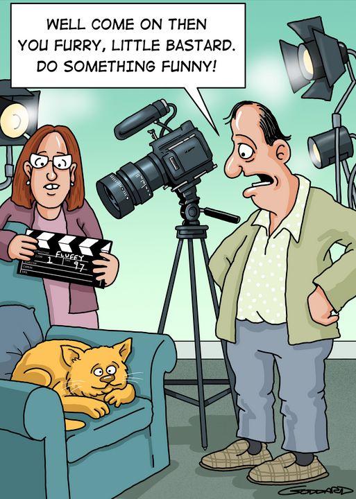 Unfunny cat - Clive Goddard