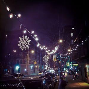 Festive - NAJE Foto