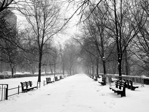 Snow Falling in Riverside Park