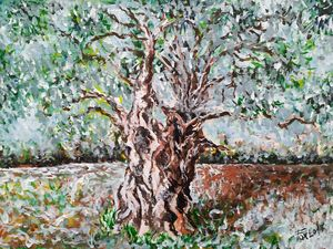 Eternal olive