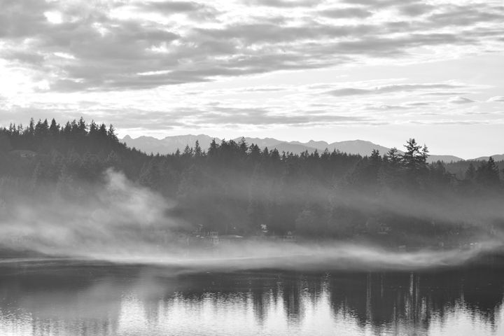 Fog on the lake - Ngtimages