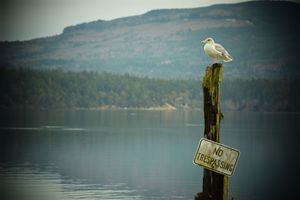 No trespassing - Ngtimages