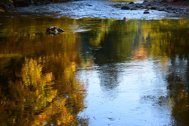 Water reflection - Ngtimages