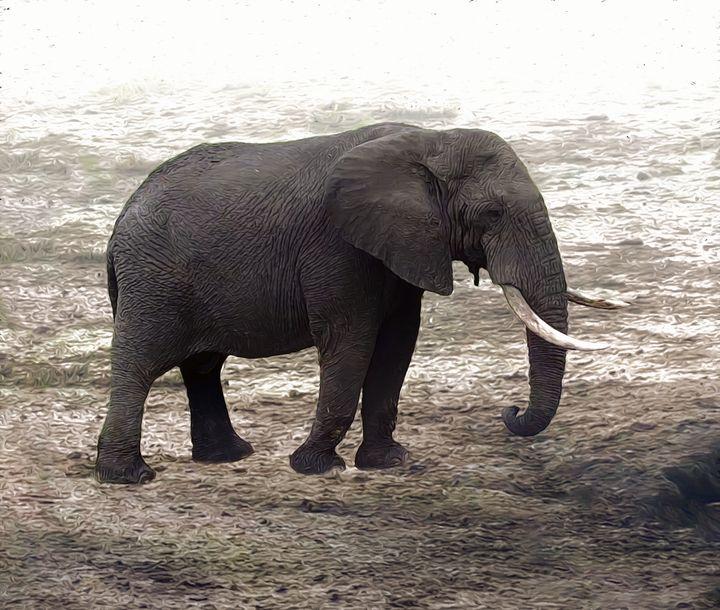 Lonely elephant - GuarDi-Art