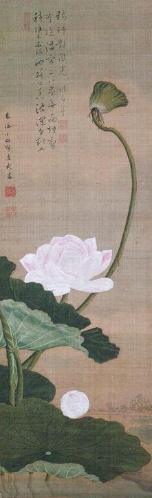 Odano Naotake~Lotus - Old classic art