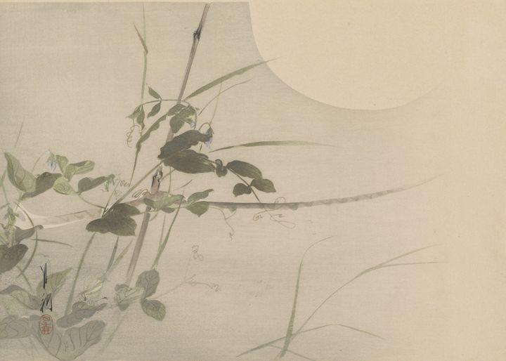 Ogata Gekkō~Flower - Old classic art