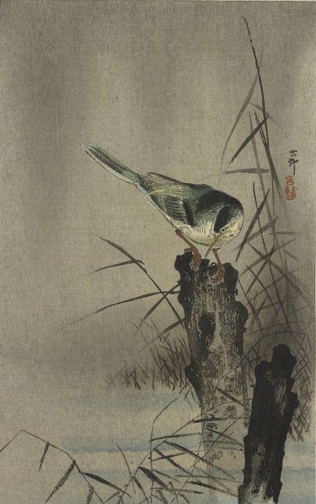 Ohara Koson~Bird on a tree stump - Old classic art