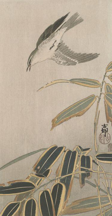 Ohara Koson~Bird over bamboo - Old classic art