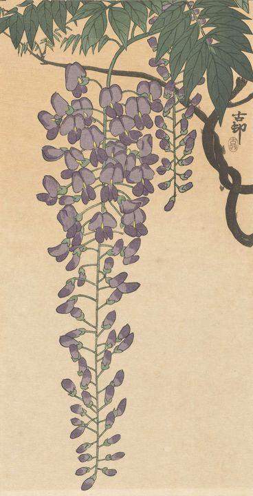 Ohara Koson~Bloeiende wisteria - Old classic art