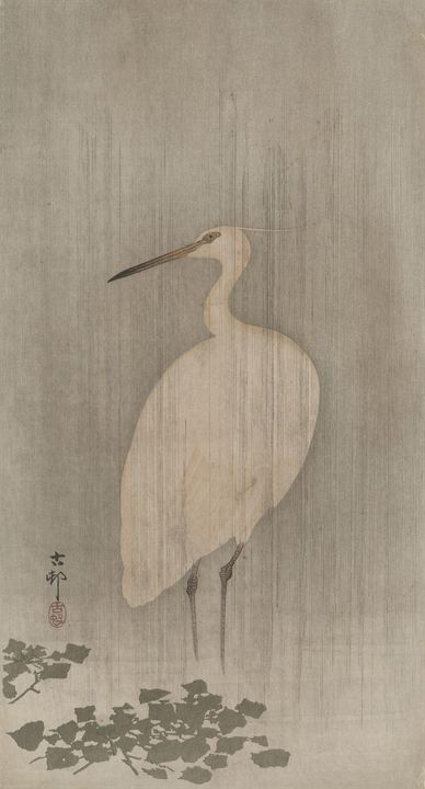 Ohara Koson~Egret And Water Chestnut - Old classic art