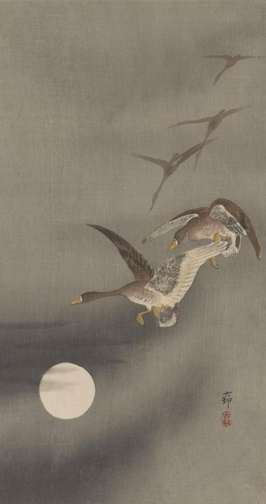 Ohara Koson~Geese And Full Moon - Old classic art