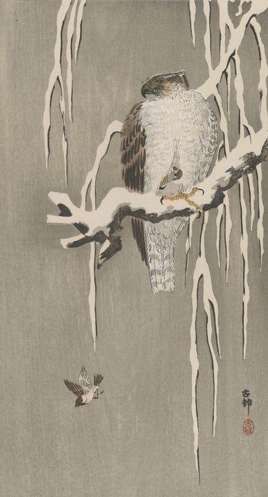 Ohara Koson~Hawk And Sparrow - Old classic art