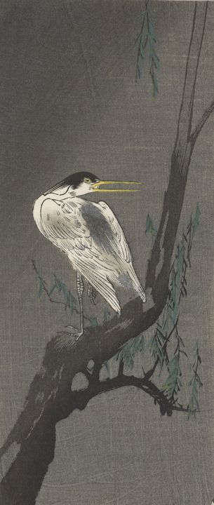 Ohara Koson~Heron perched on a willo - Old classic art