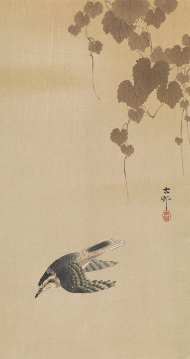 Ohara Koson~Hummingbird - Old classic art