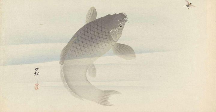 Ohara Koson~Karper en vlieg - Old classic art