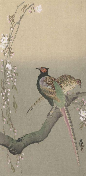 Ohara Koson~Koppel fazanten en kerse - Old classic art