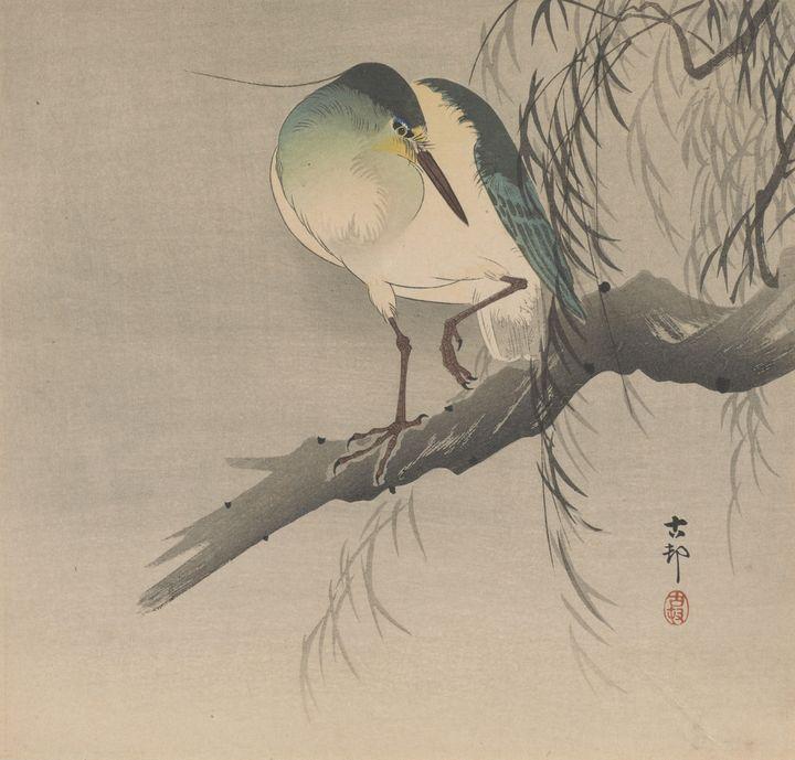 Ohara Koson~Night-heron with raised - Old classic art