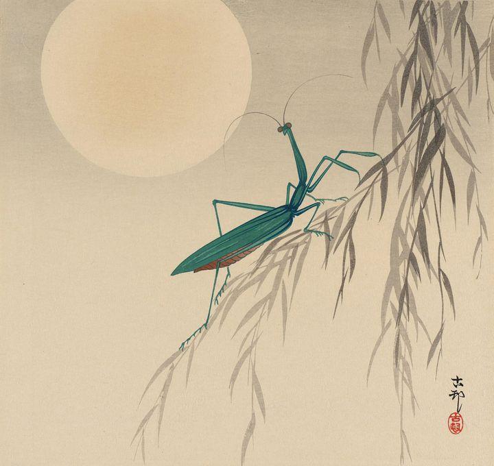 Ohara Koson~Praying Mantis and Full - Old classic art