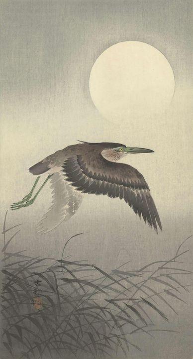 Ohara Koson~Reiger bij volle maan - Old classic art