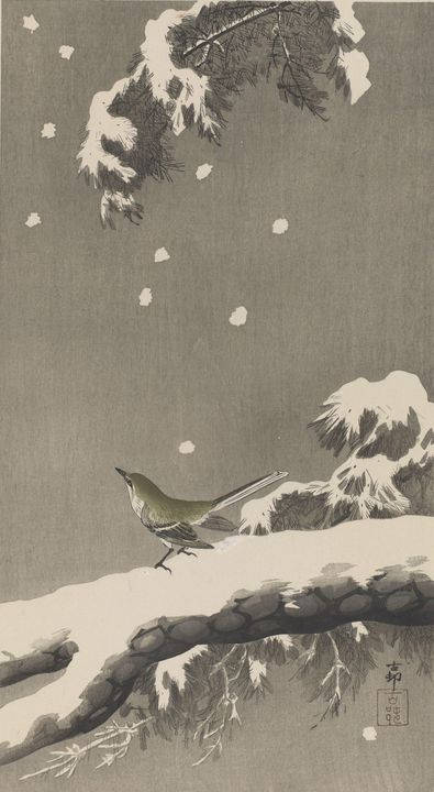 Ohara Koson~Wagtail on a snowy bough - Old classic art
