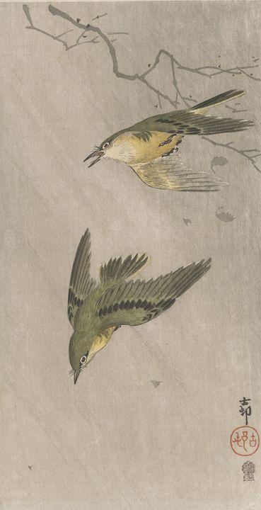Ohara Koson~Warblers in rain - Old classic art