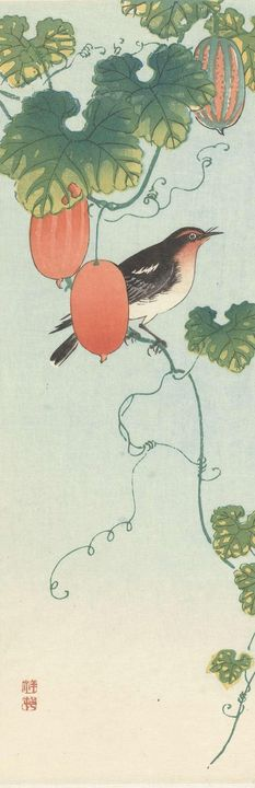 Ohara Koson~Zangvogel in komkommerpl - Old classic art