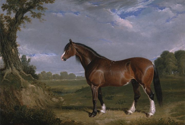 Old John Frederick Herring~A Clydesd - Old classic art