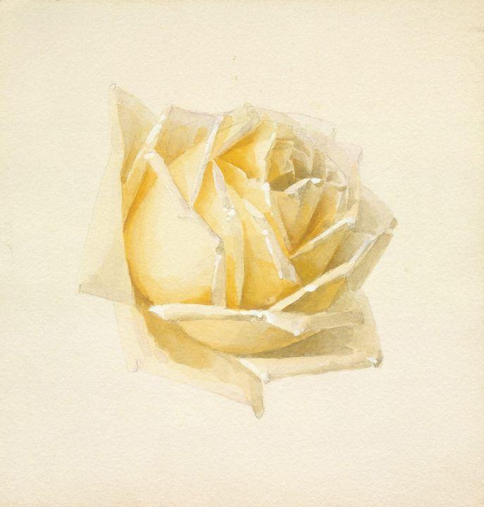 Paul de Longpré~Study of a Rose - Old classic art