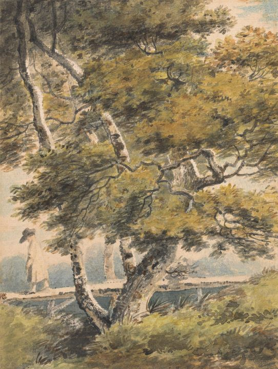 Paul Sandby~Trees, with a Man Crossi - Old classic art