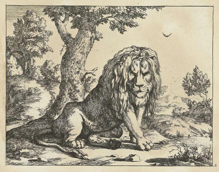 Paulus Potter, Marcus de Bye~Leeuw z - Old classic art
