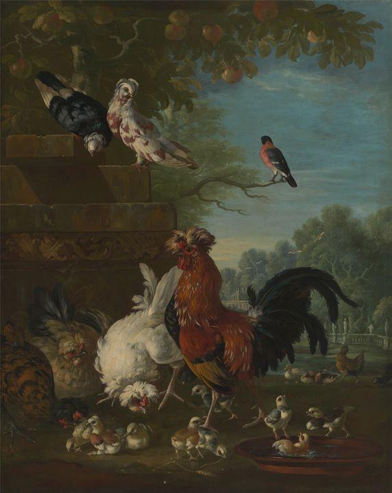 Pieter Casteels III~Domestic cock, h - Old classic art
