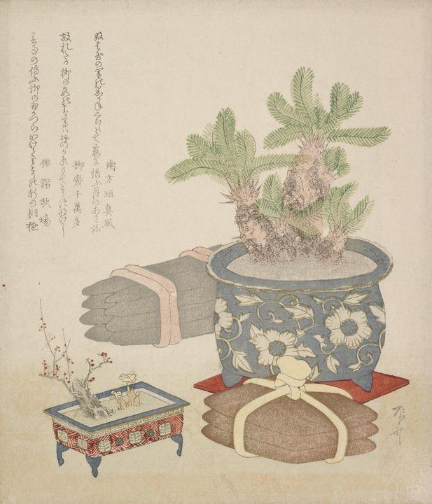 Ryūryūkyo Shinsai~Sotetsu - Old classic art