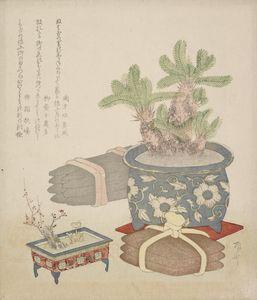 Ryūryūkyo Shinsai~Sotetsu