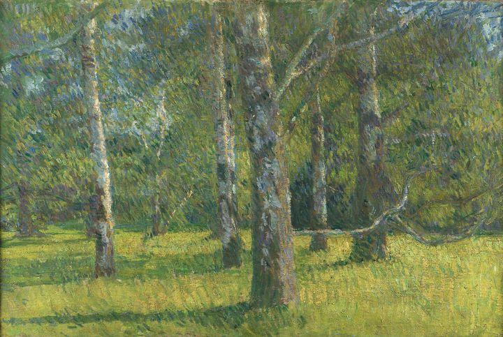 Matija Jama~Birches in Laxenburg - Old classic art