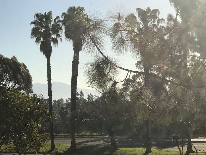 California Morning - toksabukadesign