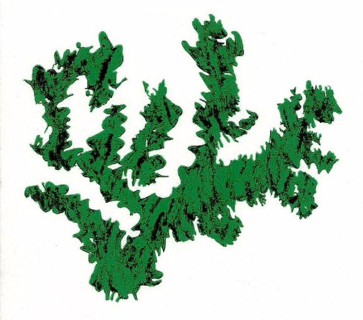 Dragon Weed - Susan Daly-Gardner