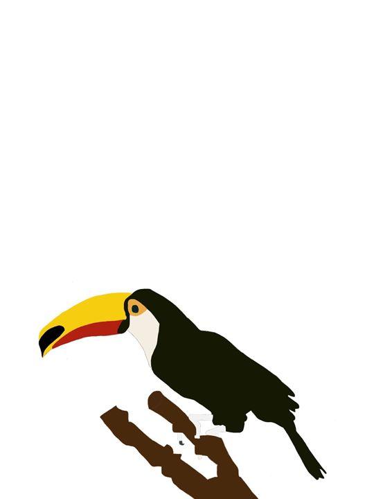 Toucan - My art