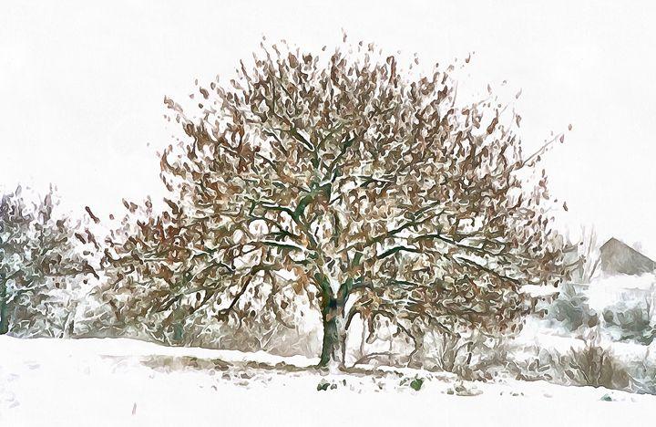 cerisier - norisknimo