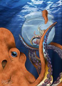 Curious Octopus
