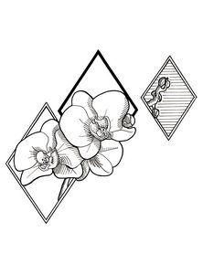 Orchid - Geometric #1