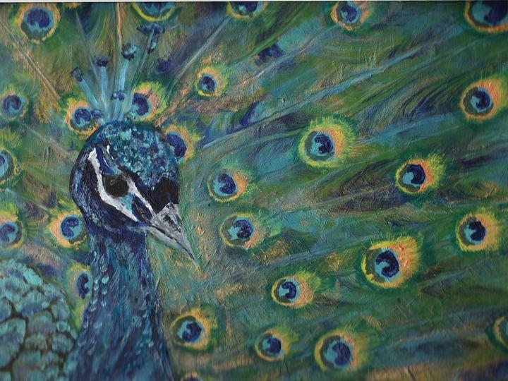 Majestic Peacock - Sami R Hall Art