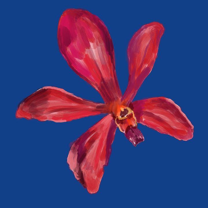 Orchid VI - Hasnul Hassan