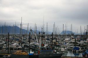 Alaskan Sea