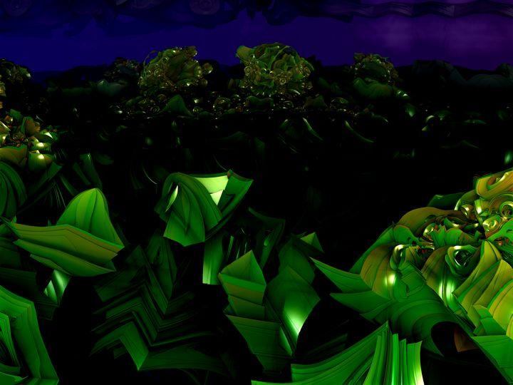 garden at midnight - J5rson! Art & Photography