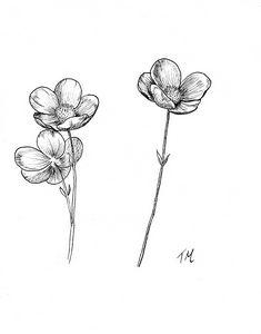 Minimalistic flowers