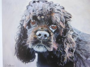 American Cocker Spaniel painting