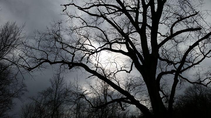 Gloomy day - Stacy